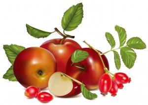 fruits-19[1]