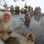 日本の風呂_1485142243-150x150